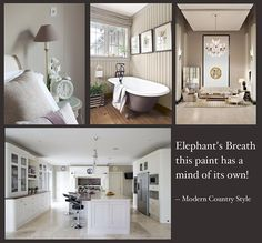 Farrow and Ball Elephant's Breath paint - my favorite warm gray. looks good next to stone, white trim, cherry cabinets.