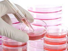 Los científicos han combinado células madre y terapia génica para reemplazar el 80% de su piel.