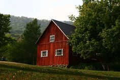 Red barn and trees, trees,....