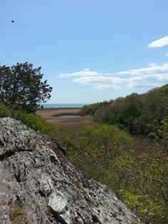 Norman bird sanctuary Rhode Island, Norman, Bird, Mountains, Nature, Travel, Naturaleza, Viajes, Birds