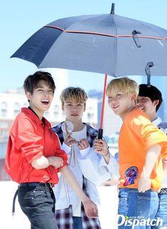 Wonwoo, Vernon, Seungkwan y Jun Woozi, Mingyu Wonwoo, Seungkwan, Seventeen Memes, Seventeen Wonwoo, Seventeen Debut, Hip Hop, Vernon Chwe, Vernon Seventeen