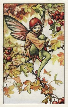The Hawthorne Fairy from Flower Fairies of the autumn, 1926, by Cicely Mary Barker