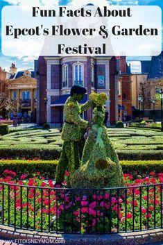 Disney World Tips: Fun Facts About Epcot's Flower & Garden Festival.