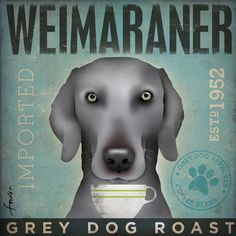 Weimaraner Coffee company vintage style graphic by geministudio, $39.00