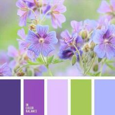 FLORAL PALETTE IN RED LAVENDERS, YELLOW GREEN AND PERIWINKLE
