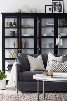 storage / shelving in living room