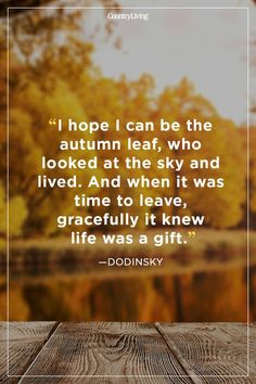 Best Quotes About Autumn. Inspiring Fall Season Quotes - Best Sayings About Autumn to Remind You Just How Amazing Autumn Is Life Quotes Love, Quotes To Live By, Fall Season Quotes, Leaf Quotes, Life Is A Gift, Look At The Sky, Beauty Quotes, Reading, Wise Words