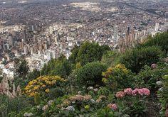 El centro... #Bogotá
