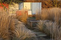 frosted grass against sunset-lit Mondrian wall at the Manor House, Stevington, Bedfordshire - designed by Kathy Brown - photograph by Clive Nichols