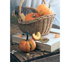 Pumpkin Season - fine art photo print autumn fall orange vegetable harvest interior decor Helloween food still life. $32.00, via Etsy.