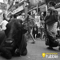 Como conhecer um pouco da exótica cultura indiana em menos de 5 minutos?  www.facebook.com/hubble.is