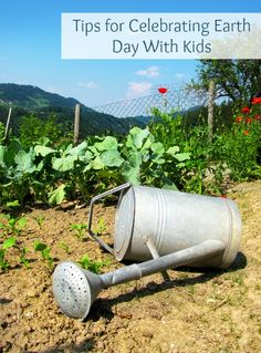 Beginning farmers guide for preparing for drought. These five steps will help you store and conserve water so your farm will continue producing during times of drought. Organic Gardening, Gardening Tips, Vegetable Gardening, Container Gardening, Flower Bed Designs, Small Space Gardening, Hobby Farms, Earth Day, Watering Can
