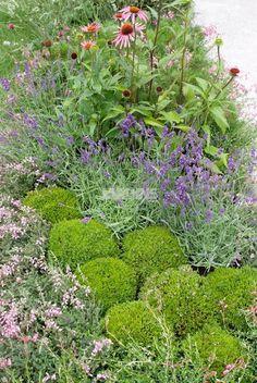 Quand on n'a pas la main verte, on recherche un petit jardin prêt à l'emploi. Avec ce mur végétal constitué exclusivement de bruyères : rien à faire !