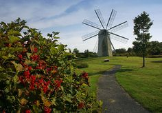 Top 10 businesses in Middletown, RI on MerchantCircle. Middletown Ri, Rhode Island History, Newport Rhode Island, Le Moulin, Windmills, World Traveler, New Hampshire, Connecticut, Vermont