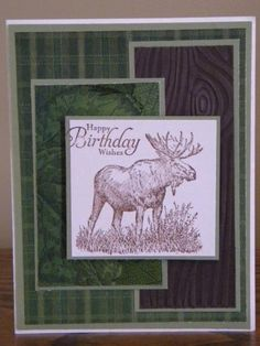 Moose Be Somebody's Birthday by Tina N. - Cards and Paper Crafts at Splitcoaststampers