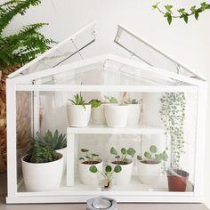 De SOCKER plantenkas thuis bij @unieque_nl | #IKEABijMijThuis IKEA IKEAnederland wooninspiratie inspiratie urban gardening kruidentuin planten