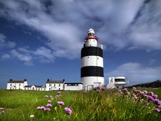 Wexford lies in Ireland's Ancient East, and there's so much to do in the region. Here are the ten best things to do and see in County Wexford, Ireland. Clare Island, Wexford Ireland, Beacon Of Light, Ireland Travel, Lonely Planet, Places To Visit, Old Things, Explore, World