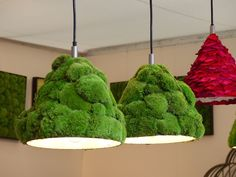 moss covered lampshade (and leaves in the back?)