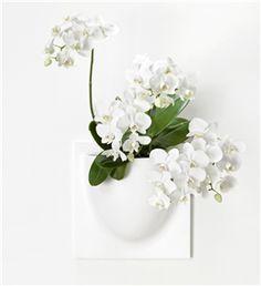 VertiPlants Potte for vegg, hvit (343-1001)