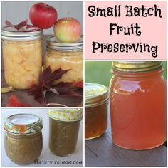 Small Batch Fruit Preserving - The Survival Mom http://thesurvivalmom.com/small-batch-fruit-preserving/