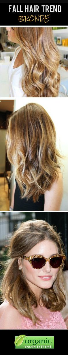 Fall Hair Trend 2013: Bronde! Bronde hair color is the perfect combination of brown and blonde!