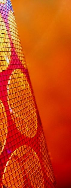 orange.quenalbertini: Orange yellow red