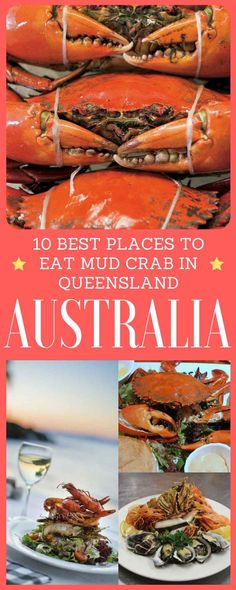 10 Best places to eat mud crab in Queensland, The mangrove tree-lined edges of Queensland coastline and the rivers that feed into it create crab heaven.