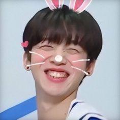 Produce 101, Meme Faces, Boyfriend Material, K Idols, Survival, Kpop, Memes, Header, Quote