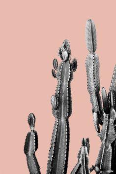 pink cactus friend Art Print, urban jungle trend, botanic trend, cactus trend, cactus art, cacti trend, cacti art, cactus poster, rose quartz