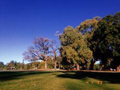 Golf Courses, Argentina