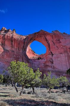 Window Rock AZ