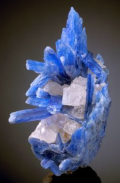 Item #A4 Aesthetic cluster of translucent to gemmy blue Kyanite crystals with…