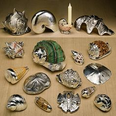 spray painted seashells                                                       …