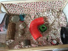 My hamsters cage! Sorry tiretred for this!