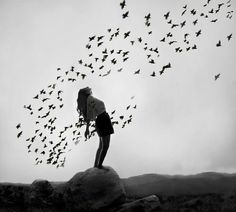 Free... Letting everything go...