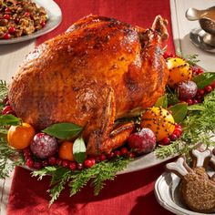 Looking to impress all your family and friends? Look no further than Andrea Buckett's Roasted Turkey with Gingerbread Glaze - this year's signature holiday turkey has arrived! Cinnamon Raisin Bread, Ginger And Cinnamon, Turkey Pan, Whole Turkey Recipes, Cooking Onions, Large Fries, Fresh Cranberries, Orange Slices, Roasted Turkey