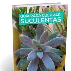 Guía para cultivar suculentas. ¡LIBRO GRATIS!