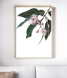 The Eucalyptus Blossom Print celebrates the beauty of Australia's native flora. Botanical Decor, Botanical Wall Art, Botanical Prints, Leaf Prints, Flower Prints, Flower Wall, Cow Art, Nursery Prints, Nursery Art