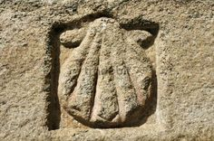 Scallop shell, traditional emblem of James. St. James´ Way, Avila, Castilla y Leon, Spain