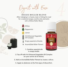 Make digestion problems a thing of the past with this rollerball recipe! Digize Essential Oil Young Living, Copaiba Essential Oil, Essential Oils Guide, Essential Oil Bottles, Young Living Oils, Young Living Digize, Yl Digize, Diffuser Blends, Recipes