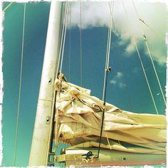 #dominicanrepublic #puntacana #catamaran
