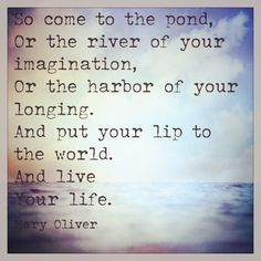 quotes from oliver - Google Search