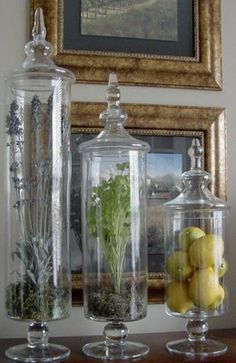 ideas to fill my apothecary jars
