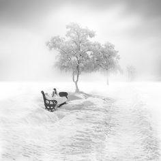 Beautiful wall art worthy photo of snow/ice. frozen_VIII by Vassilis Tangoulis on Christian Bobin, Dark Tree, I Love Snow, Winter Beauty, Nice To Meet, Winter Snow, Fine Art Photography, Snow Photography, Black And White Photography