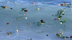 Flowers float in the Mediterranean Sea in honor of migrants lost while making the perilous journey to Europe.- CNN