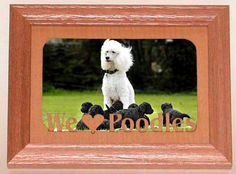 Are you looking for a custom gift? Check this out! legacyimages on Etsy: Custom Dog Picture Frames 8x10 Labrador German Shepherd Poodle Terrier Retriever Dachshund Boxer Doberman Dane Maltese Pug Dalmation (24.95 USD)