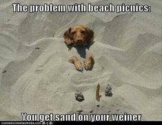 fun in sand?!?