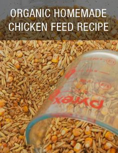 Organic Homemade Chicken Feed Recipe: http://www.mychickencoop.net/organic-homemade-chicken-feed-recipe/