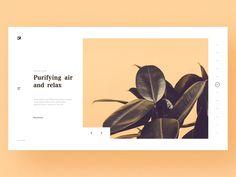 Feel green plants! by shanzei