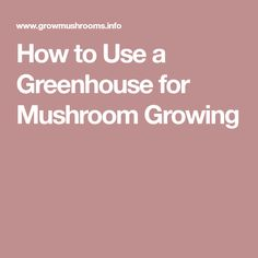 How to Use a Greenhouse for Mushroom Growing